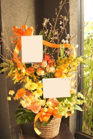 2019年3月 桜 オレンジ リボン 楽屋花 お誕生日 公演祝い アーティスト ミモザ フラワーアレンジ 配達 バラ