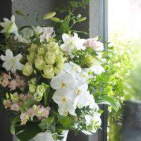 フラワーギフト 淡い色 白グリーン 胡蝶蘭 バラ ユリ デンファレ 開店祝い 直置き クリニック 美容室 アパレル 歯科医院 日持ちする花 高価に見える花 プレゼント