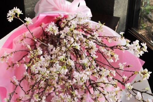 サクラ,フラワーショップ,大阪市西区,桜の花束,桜のアレンジ,大阪市西区配達.大阪市花屋,お誕生日,入学式,卒業式,お祝い